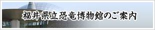 福井県立恐竜博物館のご案内